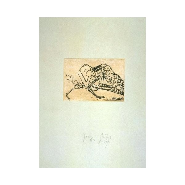 Joseph  Beuys Item 28897 Buy original art online